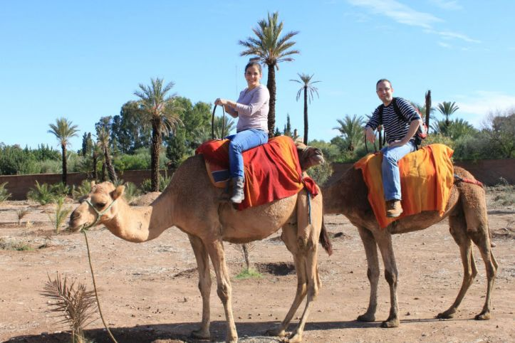 Marrakech camel riding