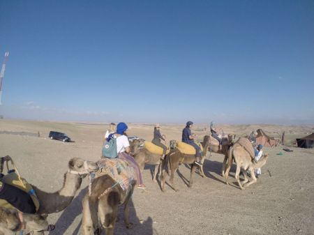 Marrakech Desert Cemel Ride
