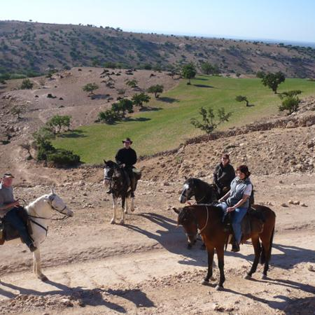Marrakech Horse Ride